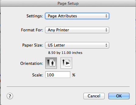 Page Setup - How to print 5.5 by 8.5 templates at home by Ahhh Design #diyplanner #discbound #printing